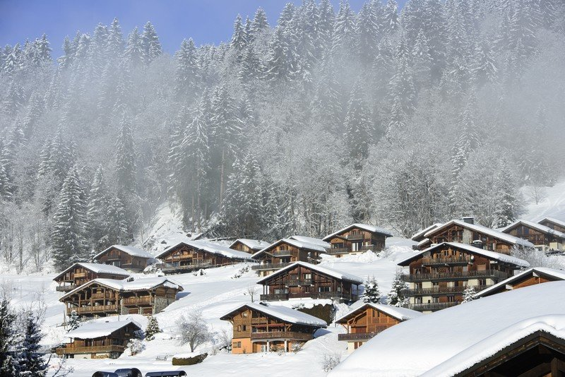 Chalets and chalet companies